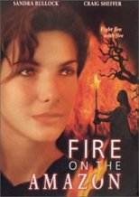 Fire on the Amazon reviews and rankings